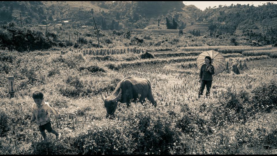 Vietnam-Photo-Shovel-Girl-(6-of-10)
